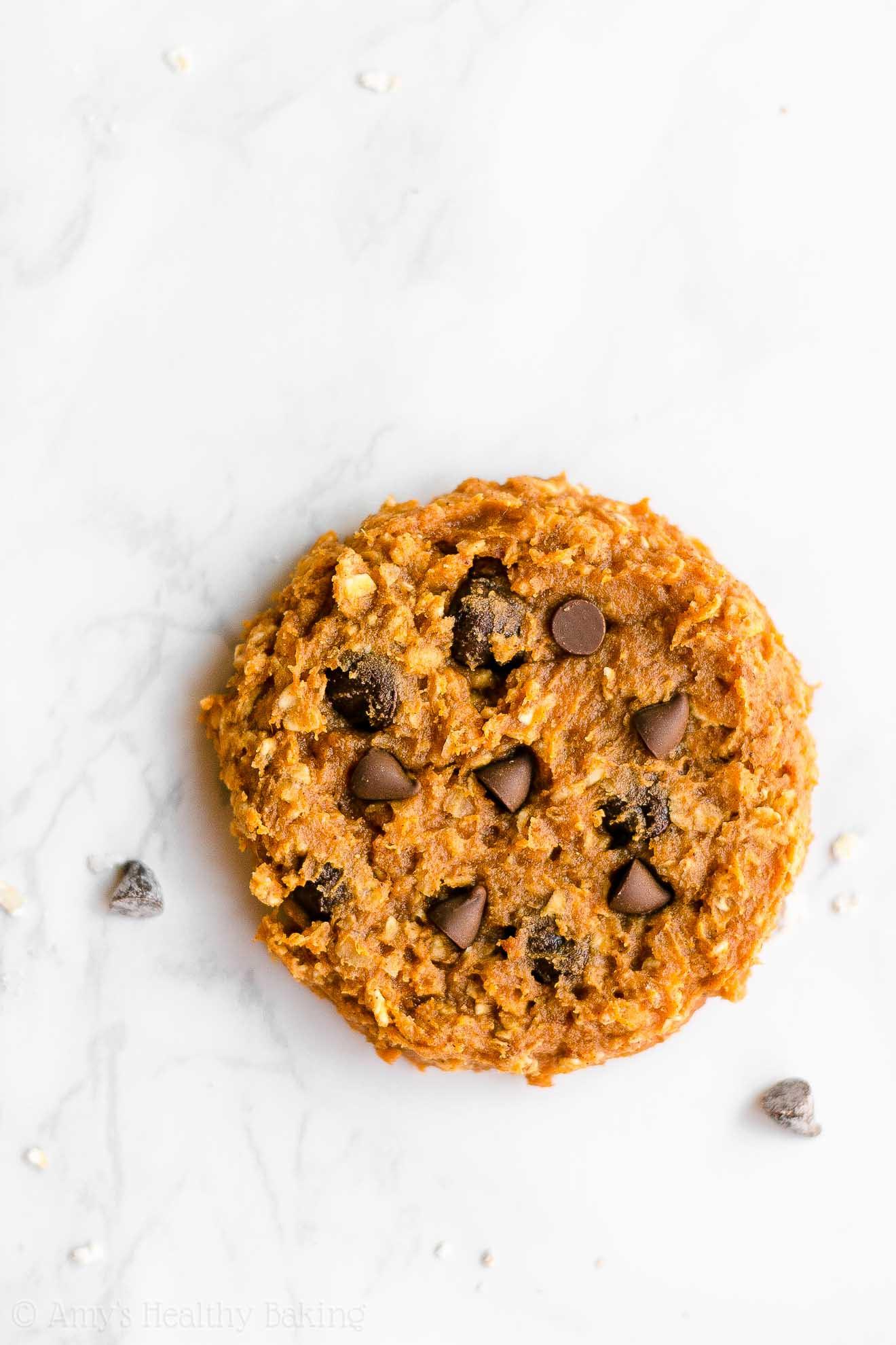 Flourless Oatmeal Cookies Healthy  Healthy Flourless Pumpkin Chocolate Chip Oatmeal Protein