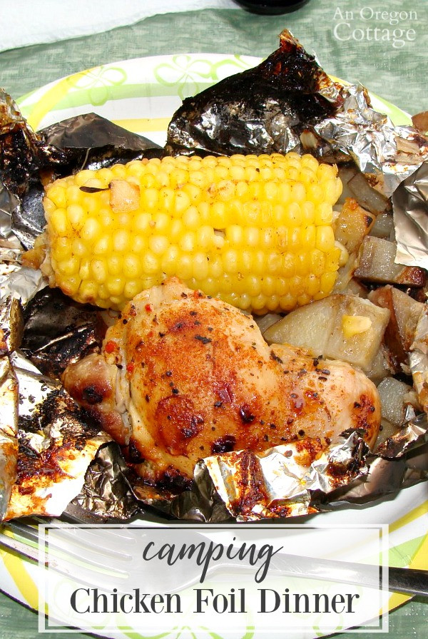 Foil Dinners For Camping  Camping Chicken Foil Dinner or Grill at Home