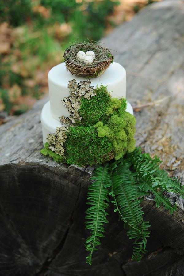 Forest Wedding Cakes  Inspired by Forest Fairytale Weddings Wedding