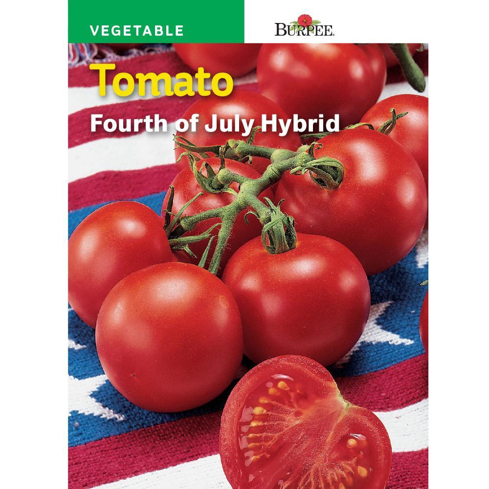 Fourth Of July Tomato  Gurney s Tomato Zebra Cherry Hybrid 25 Seed Packet
