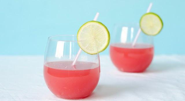 Fun Summer Vodka Drinks  Summer Mocktail Recipes Fun Non Alcoholic Drinks