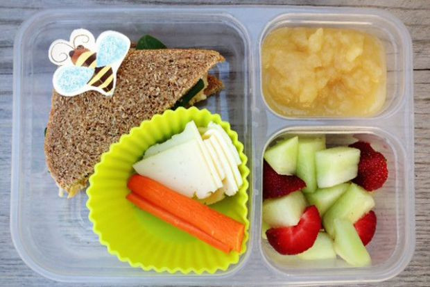 Good Healthy Lunches For School  Healthy School Lunch