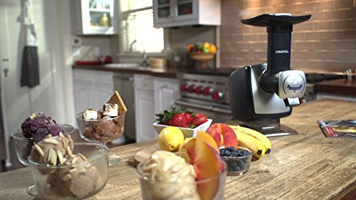 Gourmia Gsi180 Automatic Healthy Frozen Dessert Maker  Gourmia GSI180 Automatic Healthy Frozen Dessert Maker