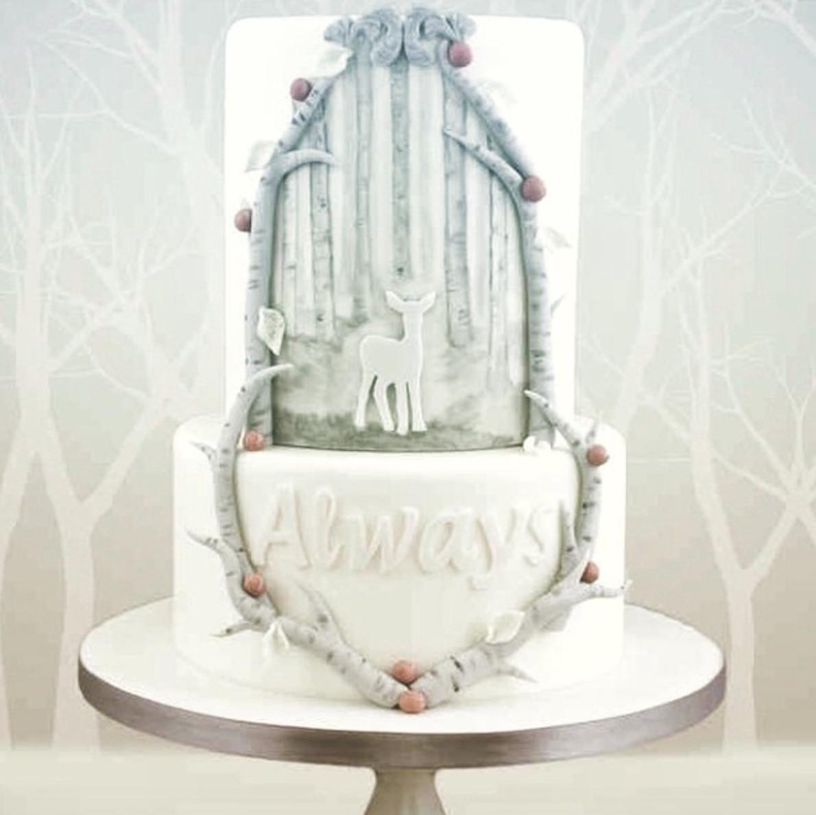Harry Potter Wedding Cakes  Harry Potter Wedding Cakes