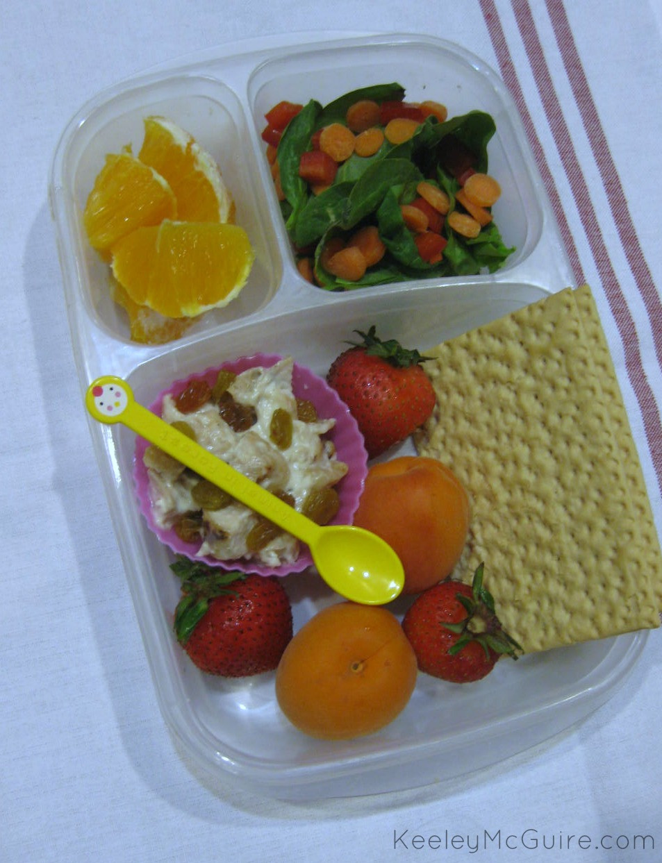 Healthy Adult Lunches the Best Ideas for Gluten Free & Allergy Friendly Lunch Made Easy Healthy