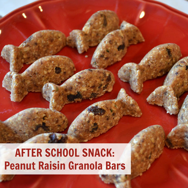 Healthy Afterschool Snacks For Weight Loss  After School Snack Recipe Peanut Butter Raisin Granola