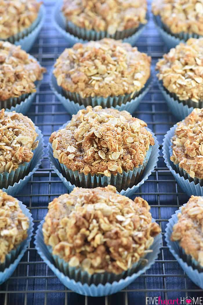 Healthy Applesauce Muffins  Healthy Whole Wheat & Honey Applesauce Muffins