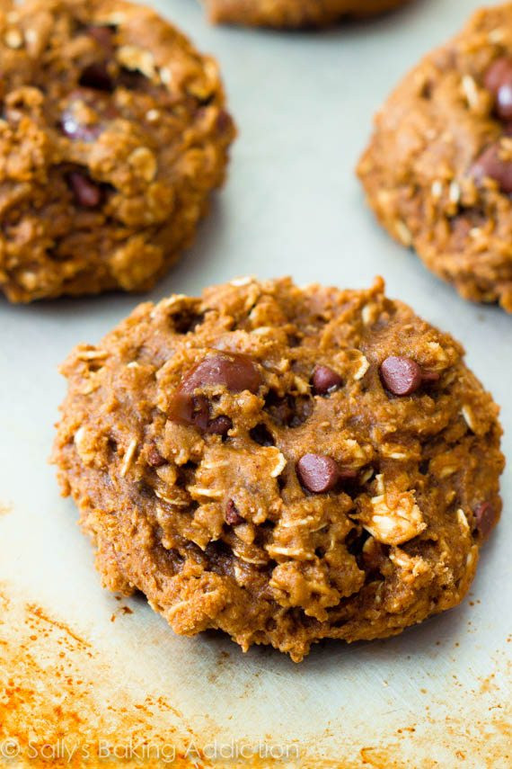 Healthy Applesauce Oatmeal Cookies  Healthy Oatmeal Raisinet Cookies Sallys Baking Addiction