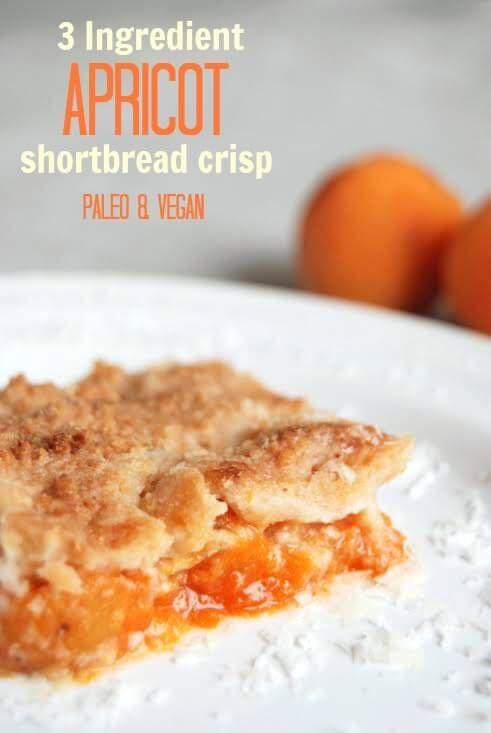 Healthy Apricot Recipes  Paleo vegan Chang e 3 and Apricot fruit on Pinterest