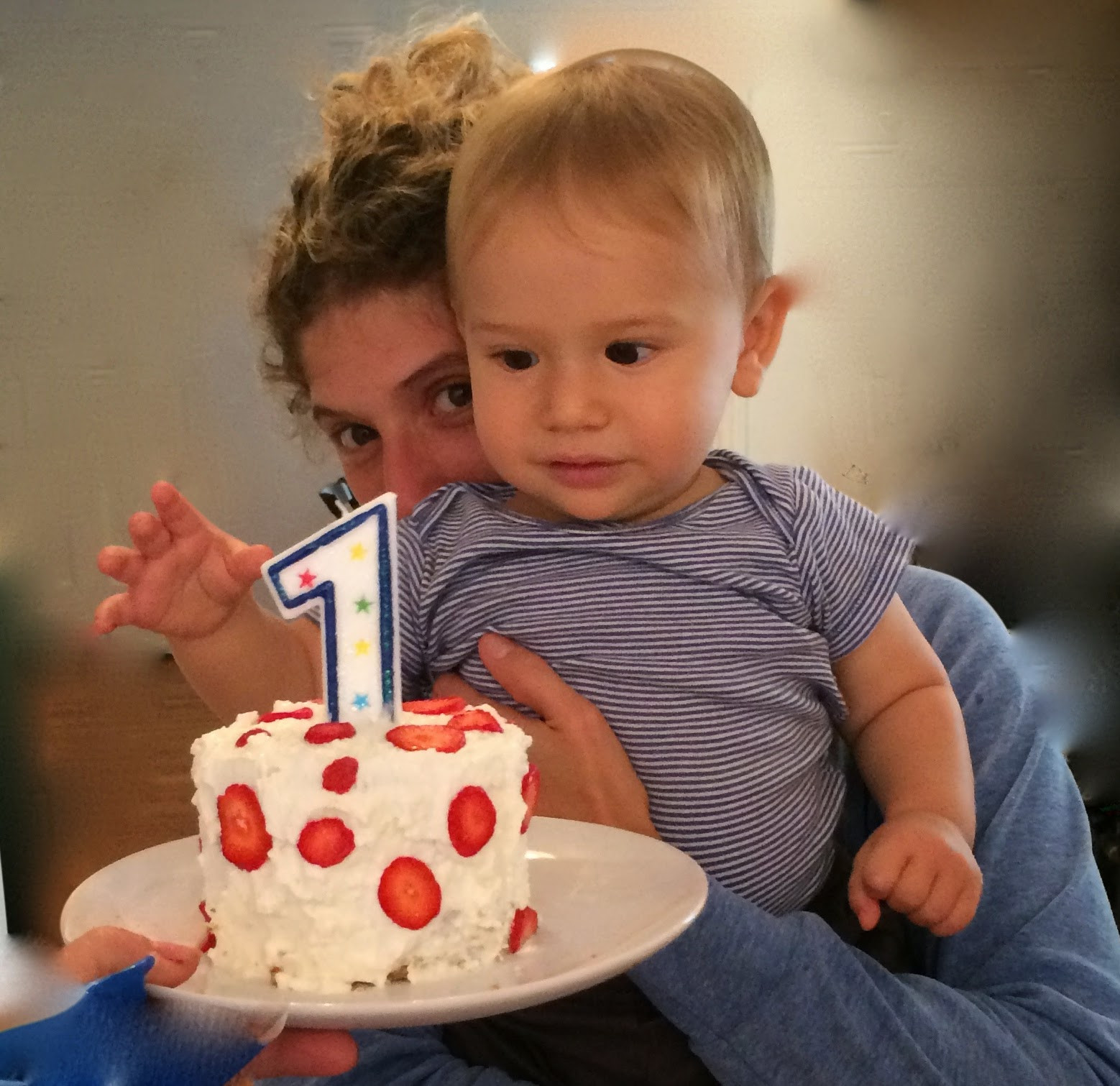 Healthy Baby First Birthday Cake  MUCH ADO ABOUT STUFFING Healthy sugar free additive