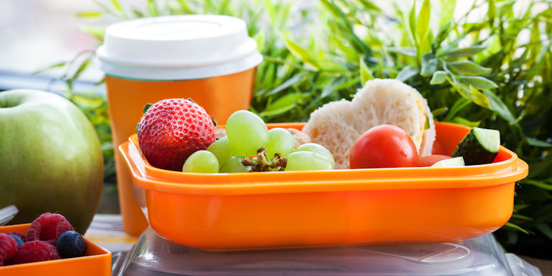 Healthy Bag Lunches  Quick & Healthy No Cook Brown Bag Lunches