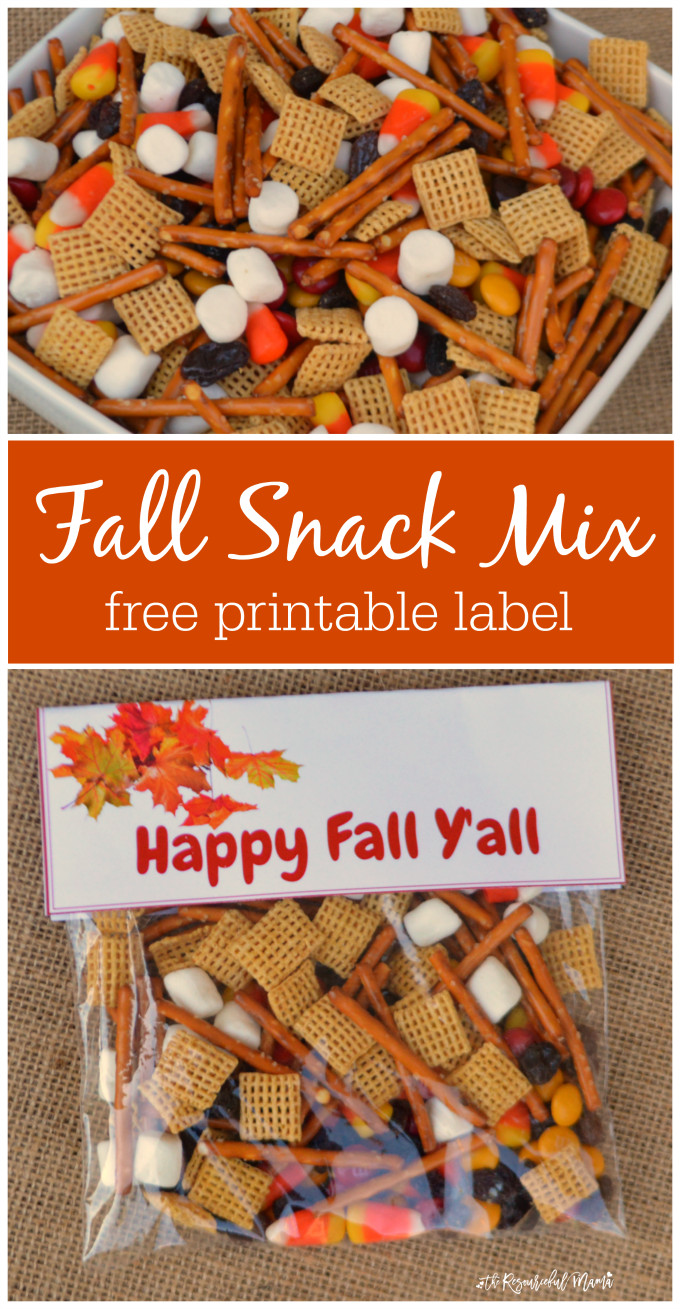 Healthy Bagged Snacks  Fall Snack Mix Treat Bags The Resourceful Mama