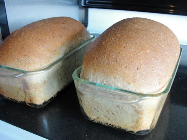 Healthy Bake Bread  Healthy Family Cookin Whole Wheat Bread Recipe