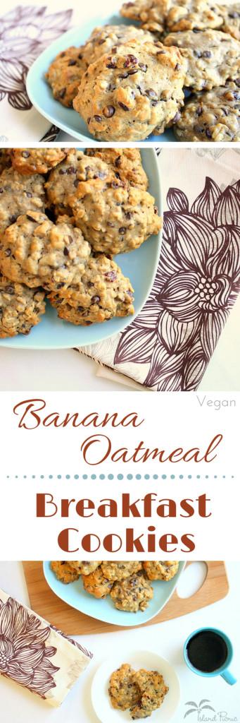 Healthy Banana Oatmeal Breakfast Cookies  Banana Oatmeal Breakfast Cookies — Healthy & Vegan