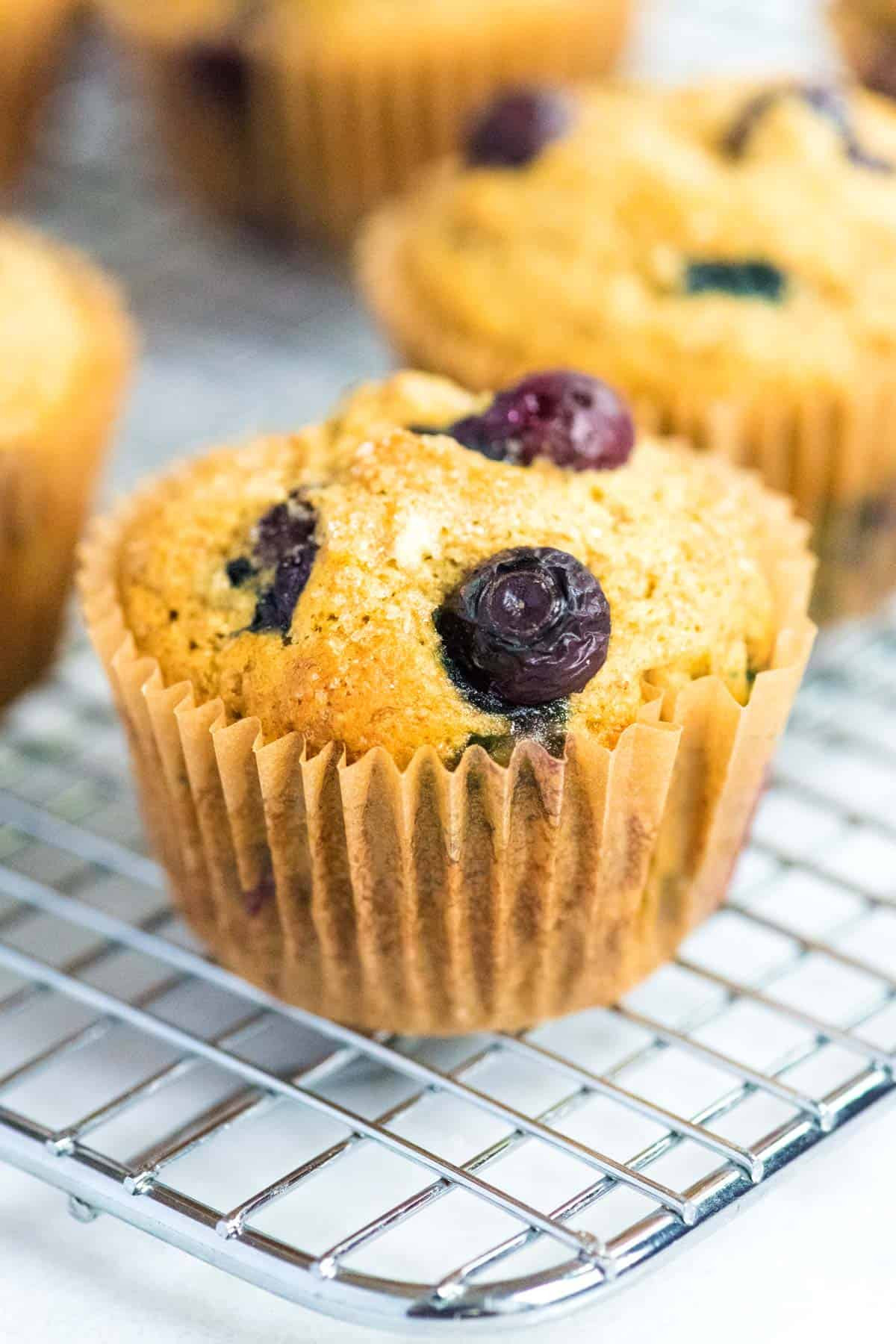 Healthy Blueberry Muffins With Applesauce  healthy blueberry muffins recipe