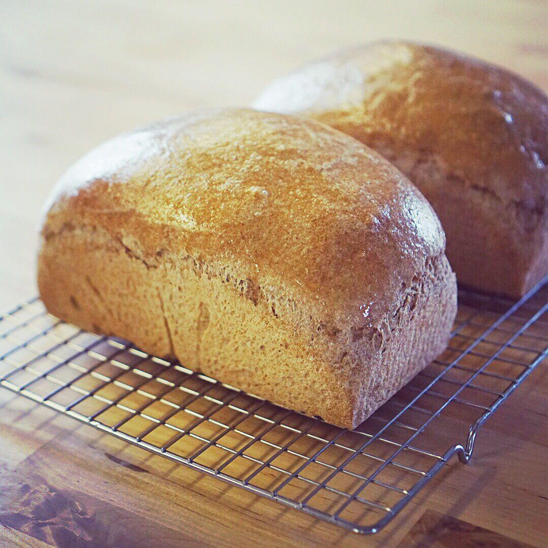 Healthy Bread Maker Recipes  THM Easy Sprouted Whole Grain Bread in a Bread Machine