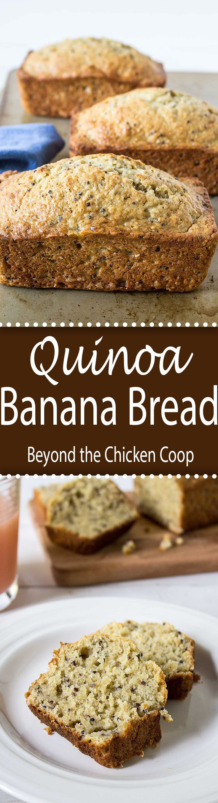 Healthy Bread Substitute  25 best ideas about Bread Substitute on Pinterest