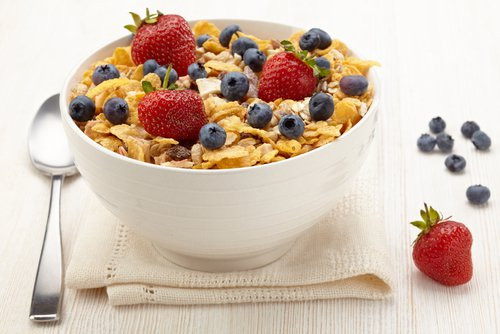 Healthy Breakfast Cereal  Nutritious Breakfast Cereals for Kids