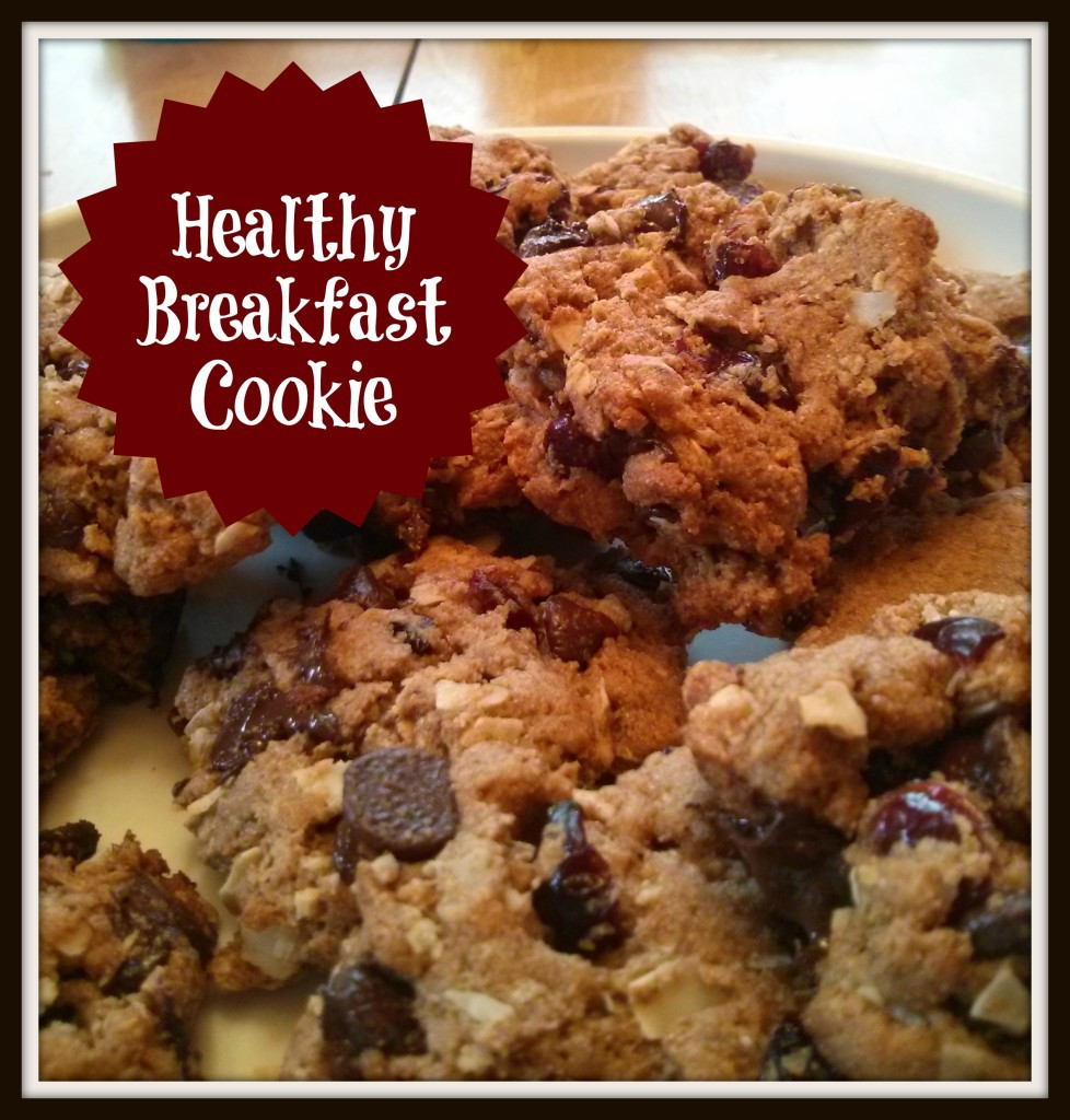 """Healthy Breakfast Cookie  """"Healthy"""" Breakfast Cookie — Just Jilly"""