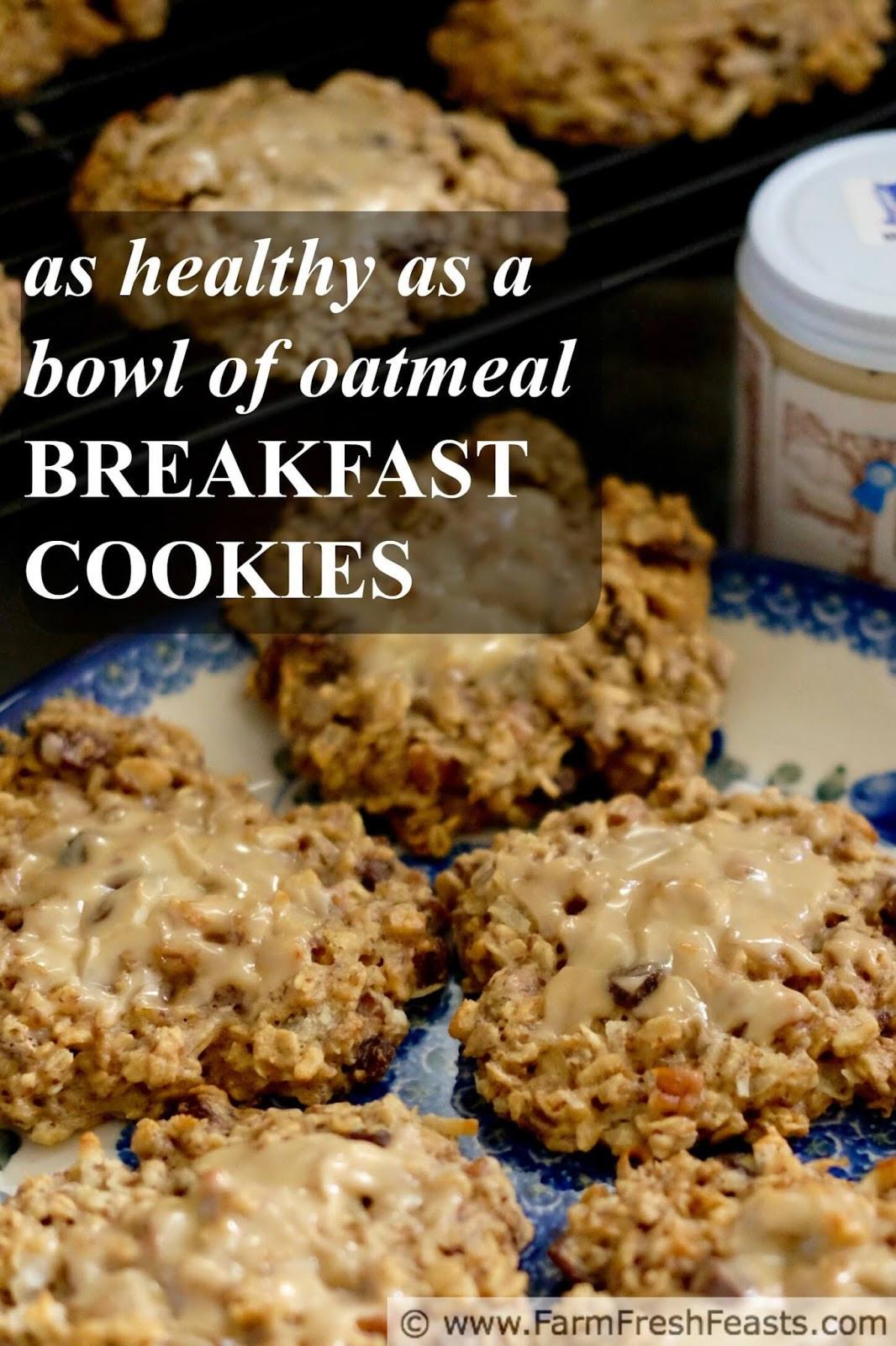 Healthy Breakfast Cookie  Farm Fresh Feasts Healthy Breakfast Cookies