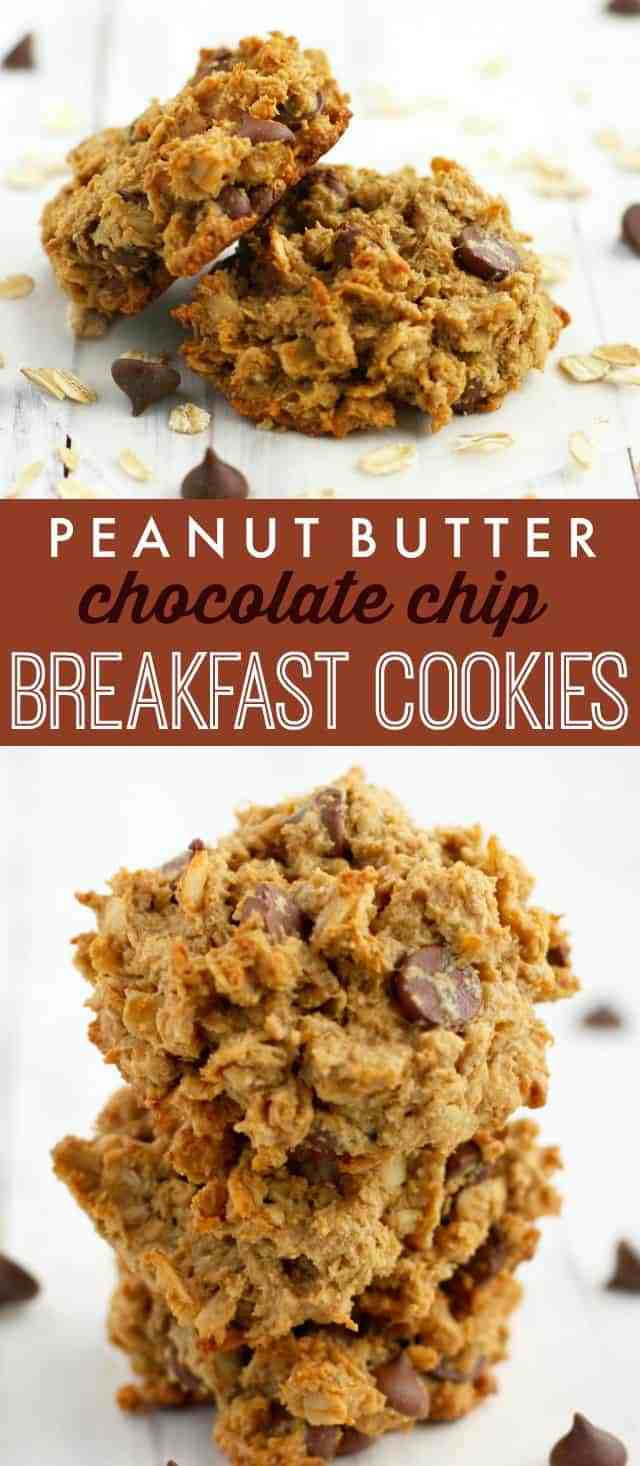 Healthy Breakfast Cookie Recipes  Peanut Butter Chocolate Chip Breakfast Cookies The