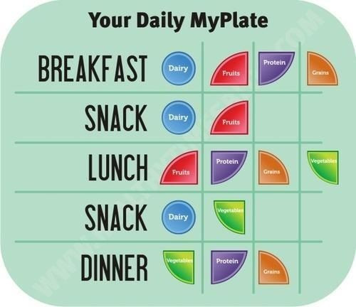 Healthy Breakfast Lunch And Dinner Chart  your daily myplate breakfast lunch dinner snack portion