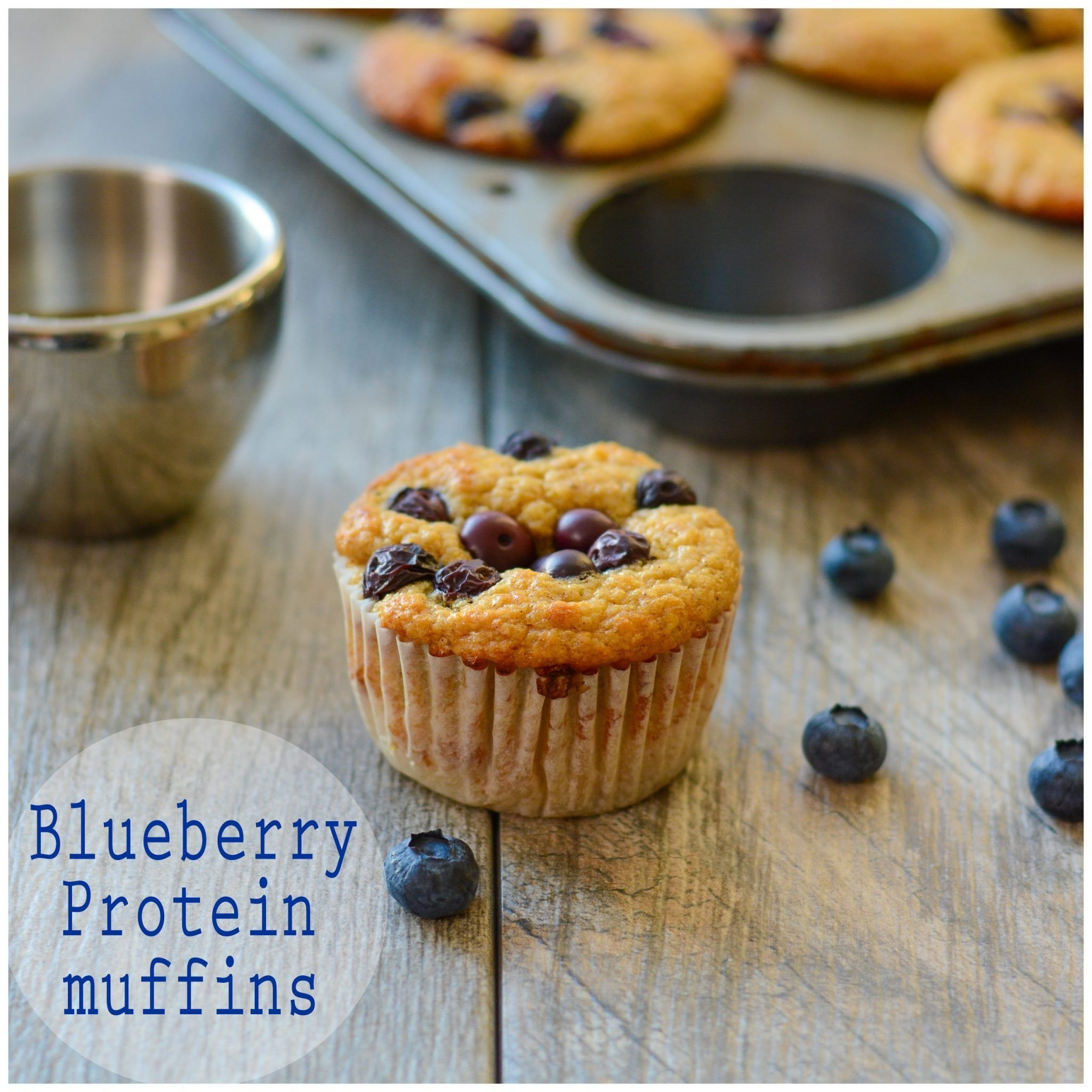Healthy Breakfast Muffins Low Calorie  Blueberry Protein Muffins A Healthy Life For Me