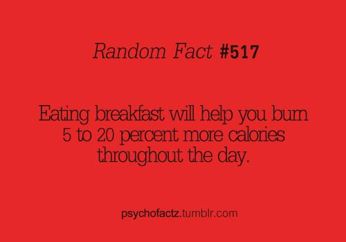 Healthy Breakfast Quotes  Eat Breakfast Quotes QuotesGram