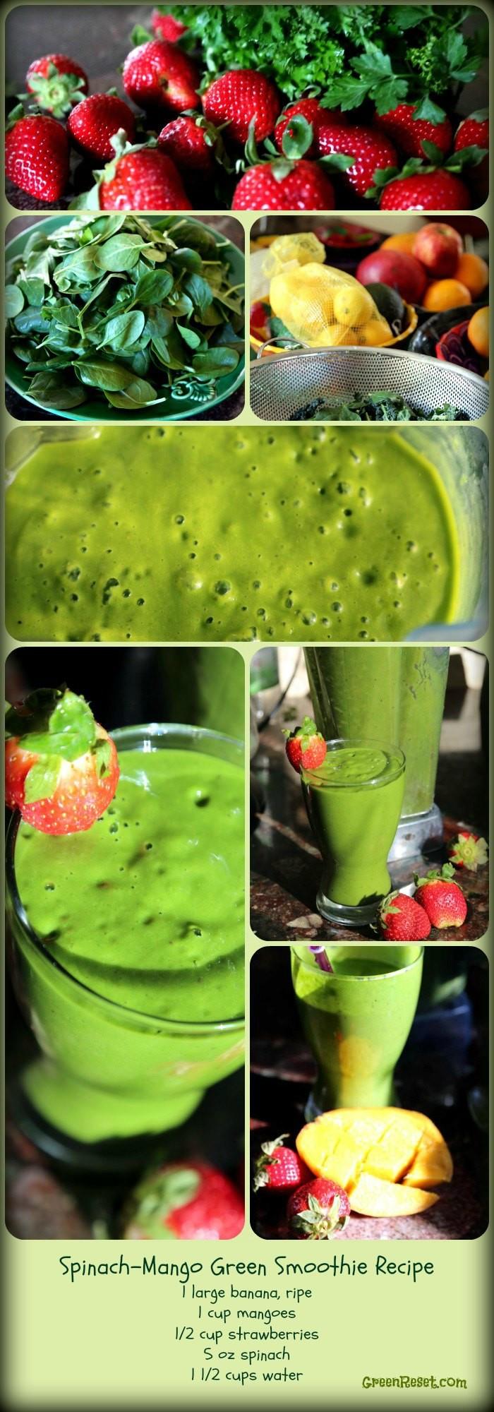 Healthy Breakfast Smoothie Recipe  9 Breakfast Smoothies Plus 3 More Super Healthy Breakfast