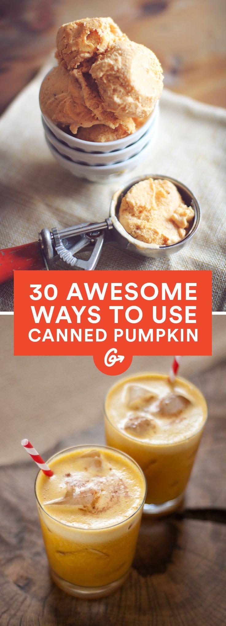 Healthy Canned Pumpkin Dessert Recipes  100 Canned Pumpkin Recipes on Pinterest