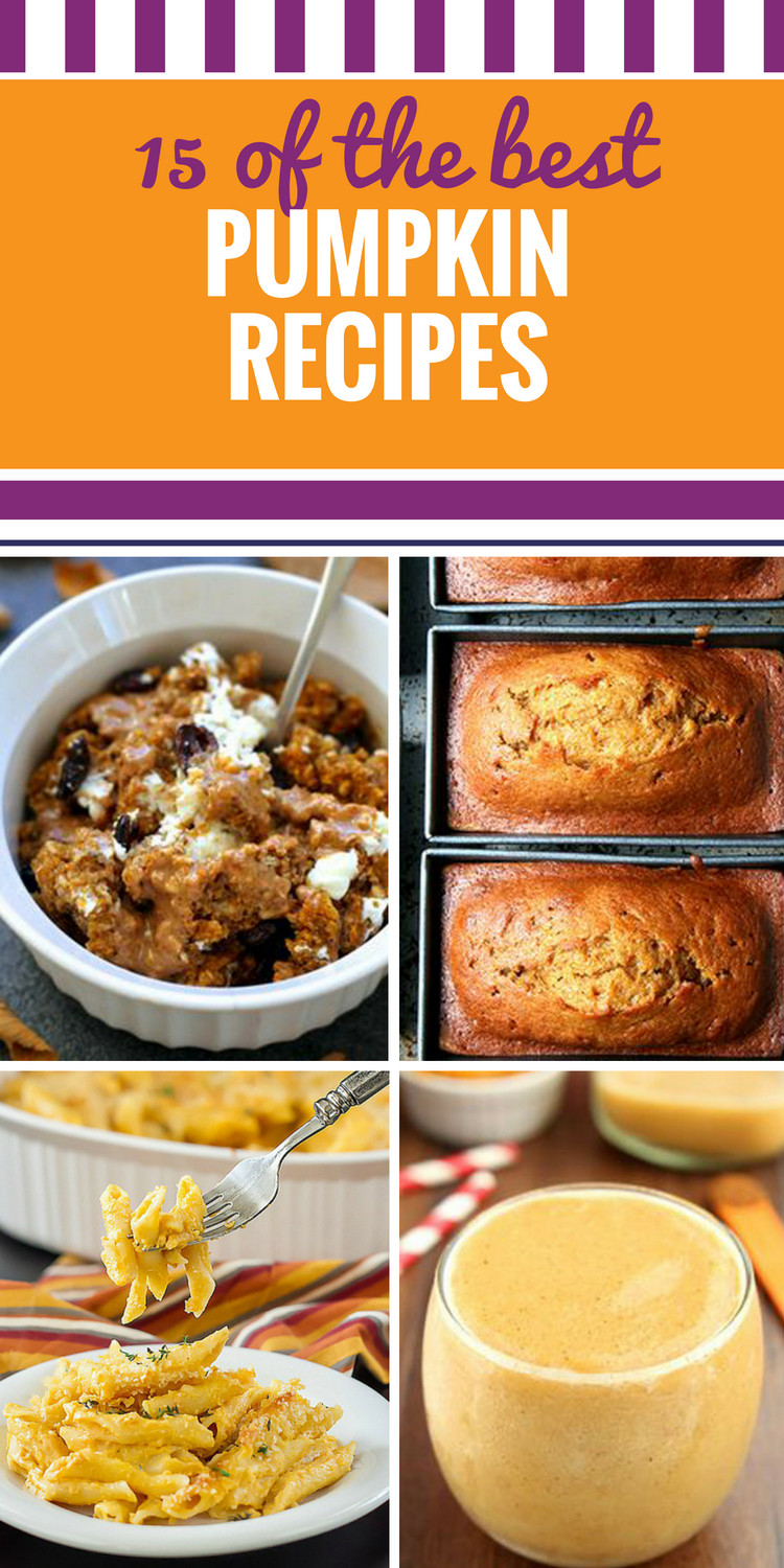 Healthy Canned Pumpkin Dessert Recipes  Desserts 8 9 My Life and Kids