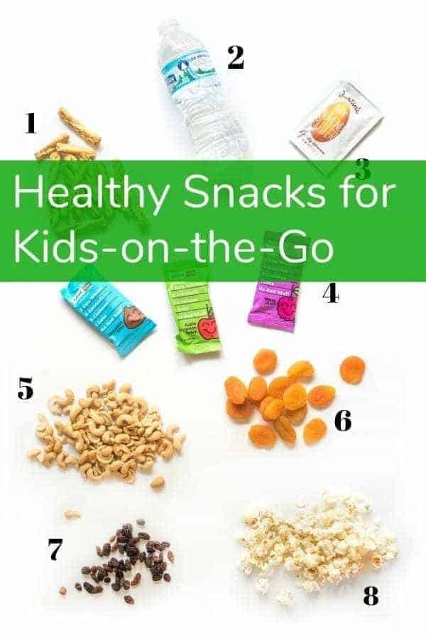 Healthy Car Snacks  Healthy The Go Snacks for Kids The Lemon Bowl
