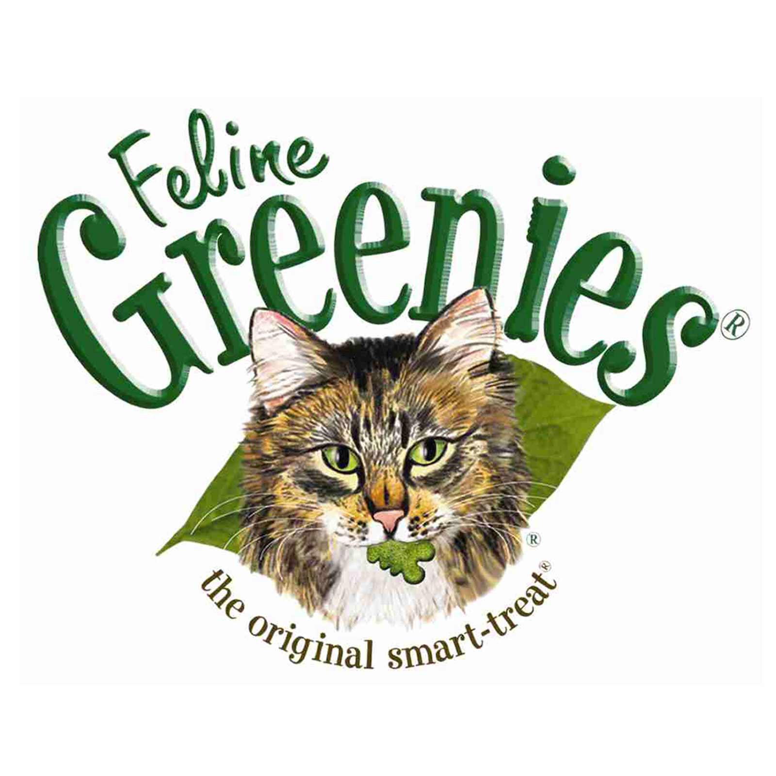 Healthy Cat Snacks  Greenies Feline Chicken 85G Healthy Cat Treats Dental