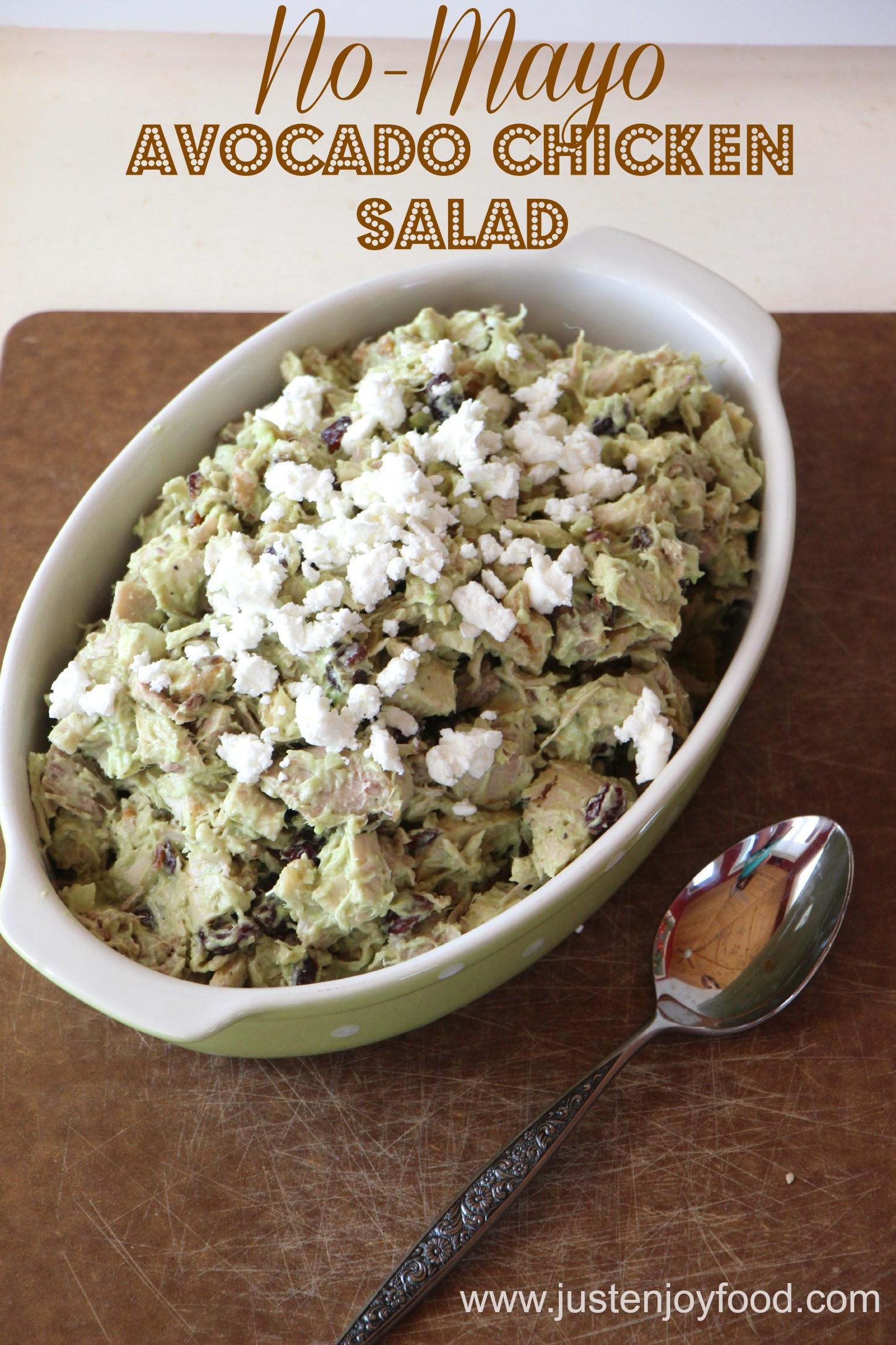 Healthy Chicken Salad Recipe No Mayo  chicken salad no mayo no dairy