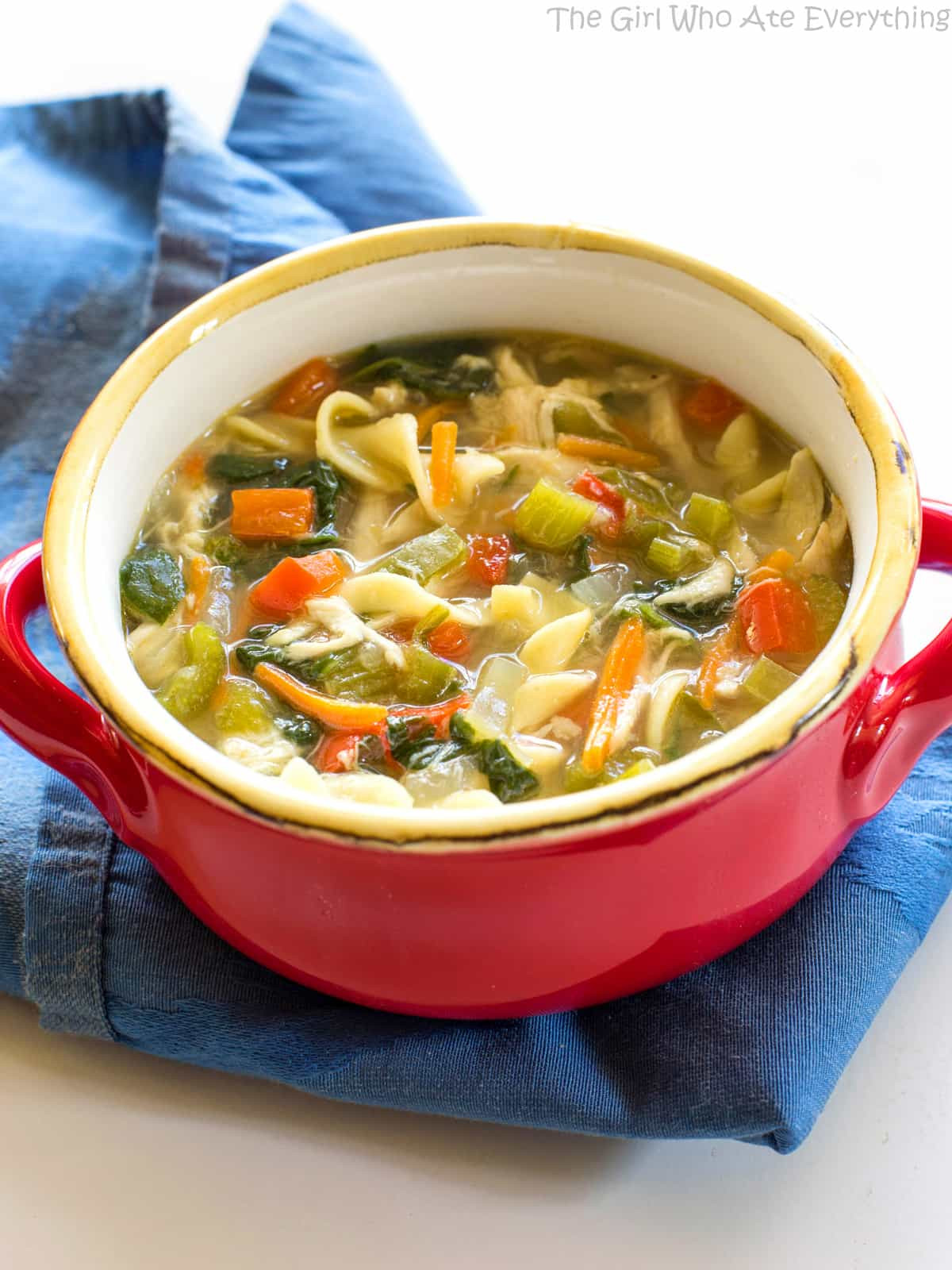 Healthy Chicken Soup  Healthy Ve able Chicken Soup The Girl Who Ate Everything