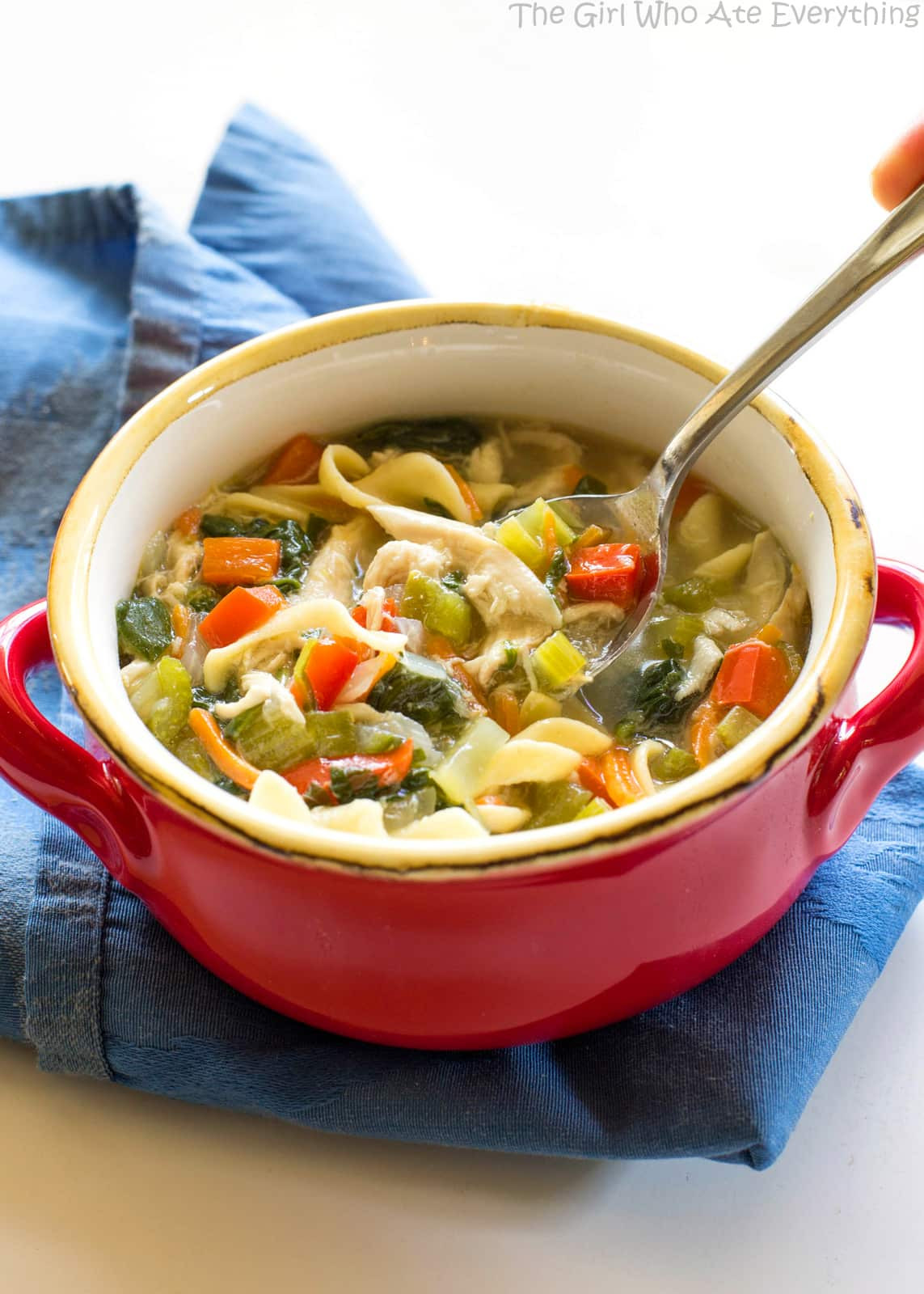 Healthy Chicken Vegetable Soup  Healthy Ve able Chicken Soup The Girl Who Ate Everything