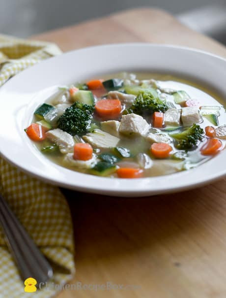 Healthy Chicken Vegetable Soup  20 Low Fat Easy & Healthy Chicken Recipes