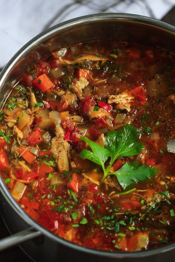 Healthy Chicken Vegetable Soup  Chicken Ve able Soup Recipe Primavera Kitchen