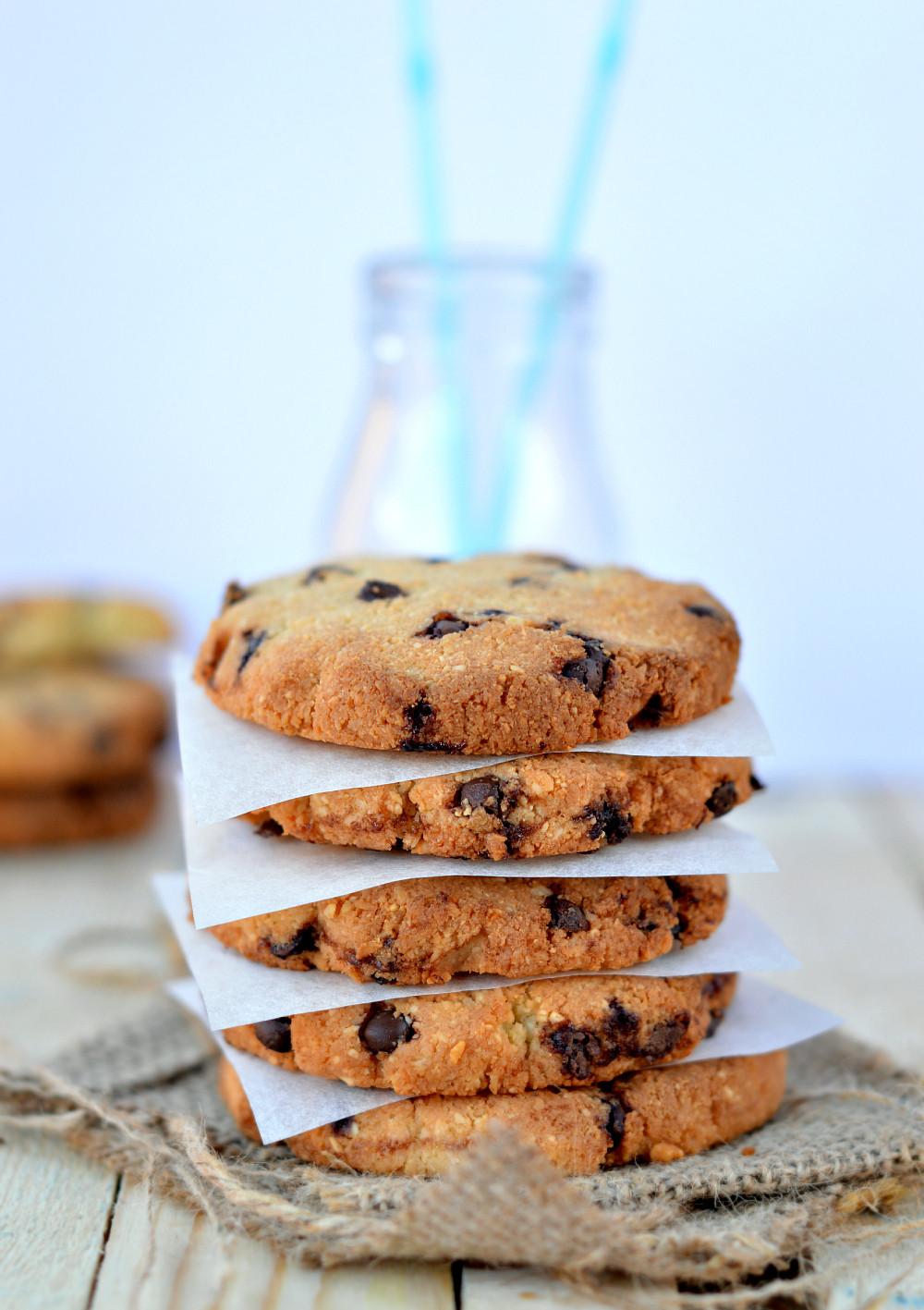 Healthy Chocolate Chip Cookies  Healthy Chocolate Chips Cookies Sugar Free Grain Free
