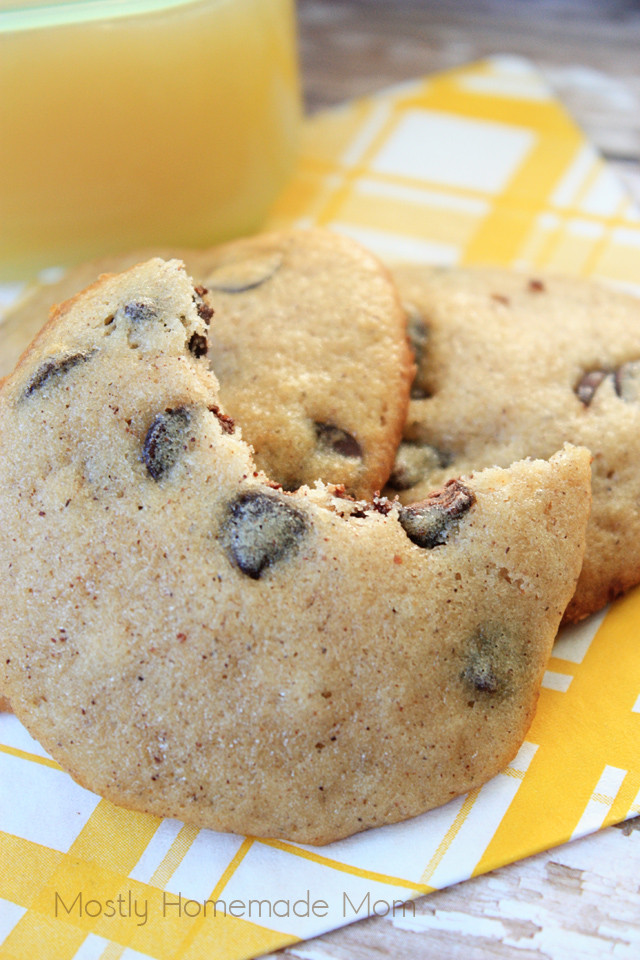 Healthy Chocolate Chip Cookies With Applesauce  Chocolate Chip Applesauce Cookies