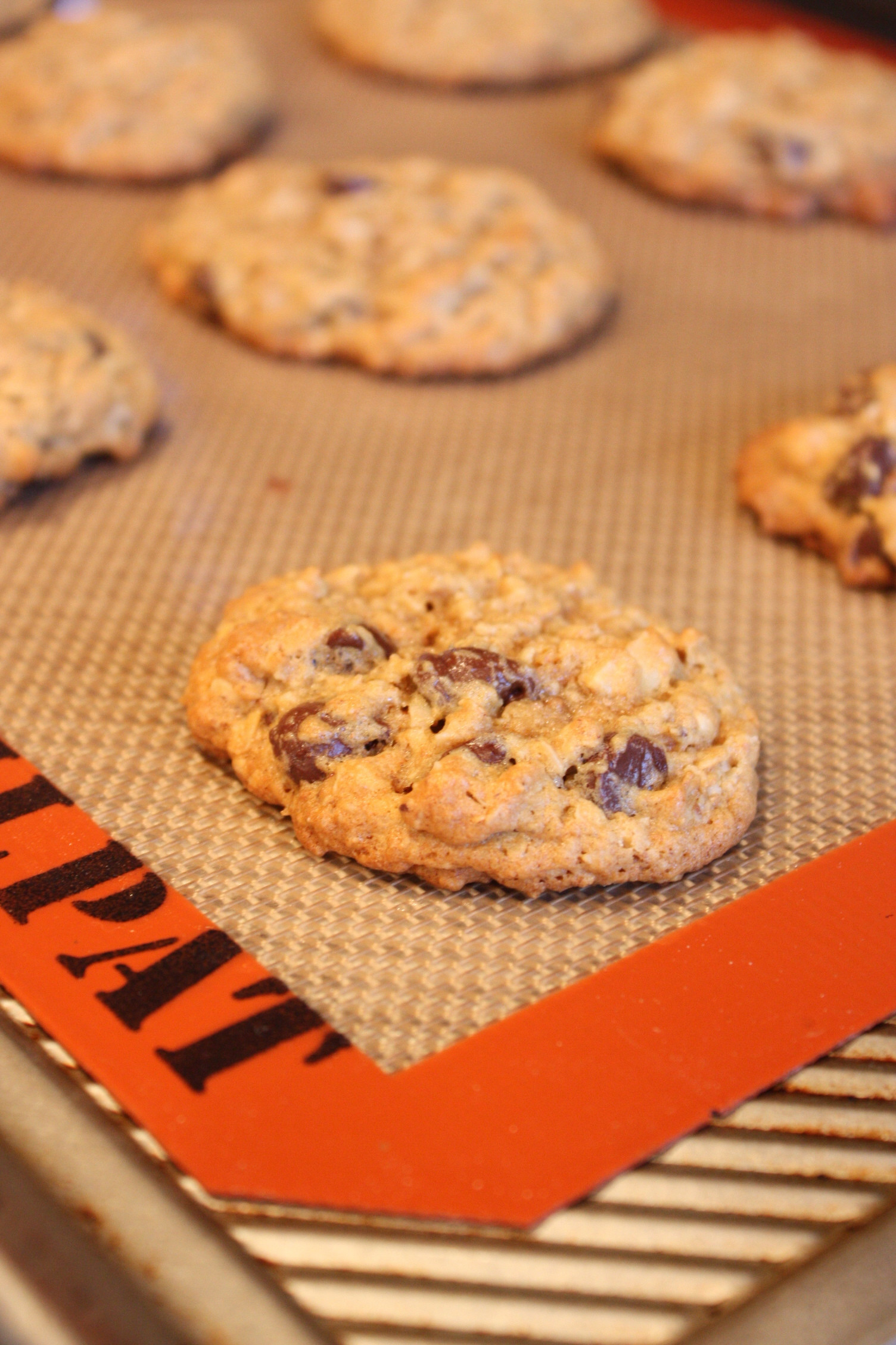 Healthy Chocolate Chip Oatmeal Cookies  Healthy Oatmeal Chocolate Chip Flax Cookies
