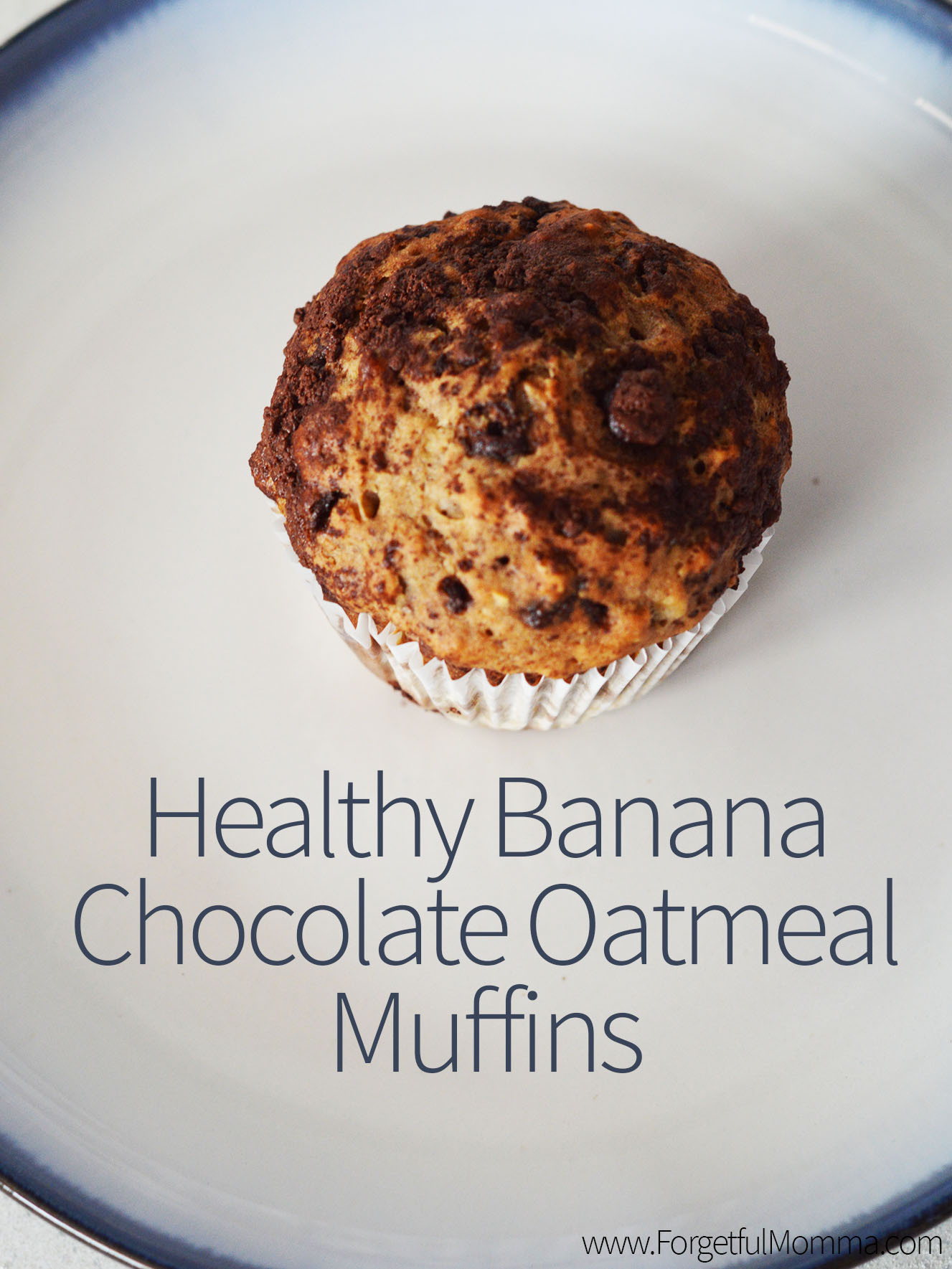 Healthy Chocolate Muffins Oatmeal  Healthy Banana Chocolate Oatmeal Muffins For ful Momma