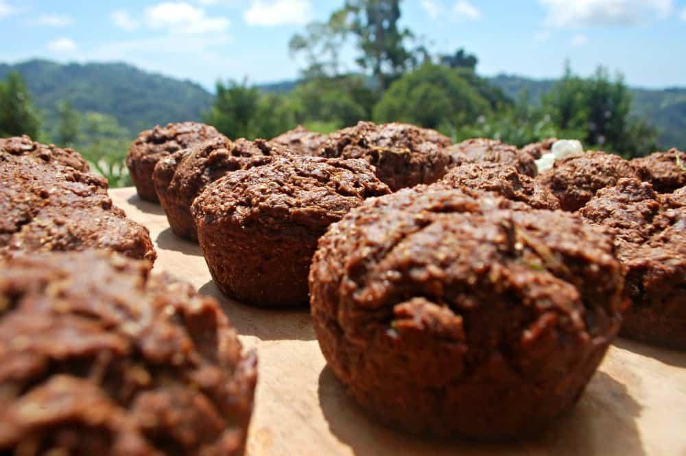 Healthy Chocolate Zucchini Muffins  Healthy Plant Based Chocolate Zucchini Muffins – True