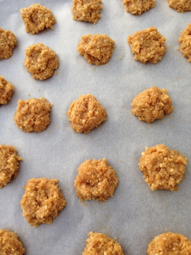 Healthy Coconut Macaroons Recipe  Healthy coconut and almond macaroons recipe