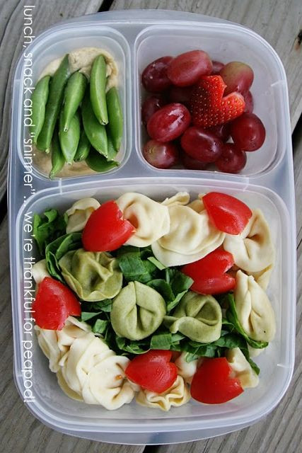 Healthy Cold Lunches  237 best images about Bento lunches for adults on Pinterest