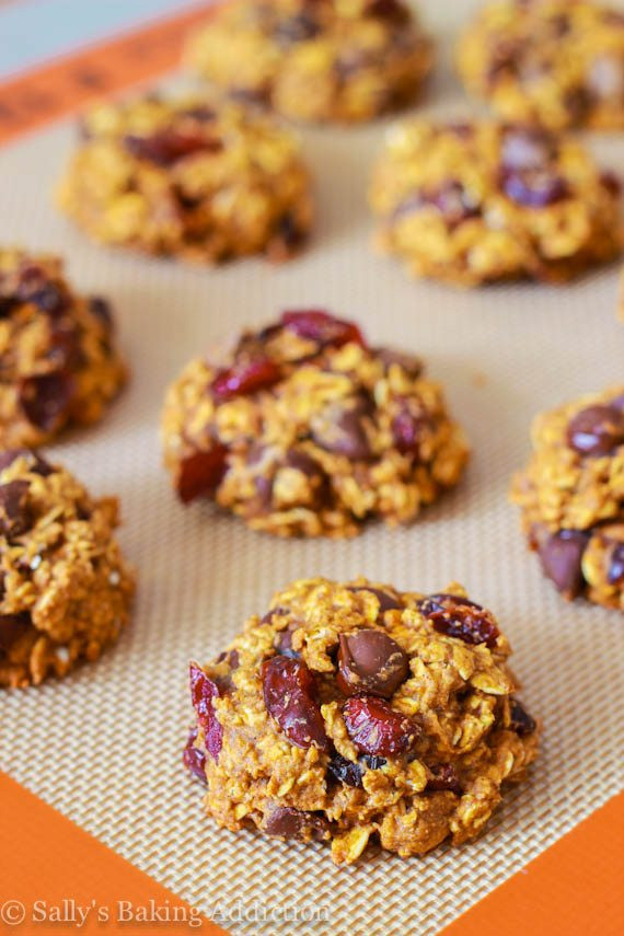 Healthy Cookies Recipe Low Calorie  healthy pumpkin cookies recipes