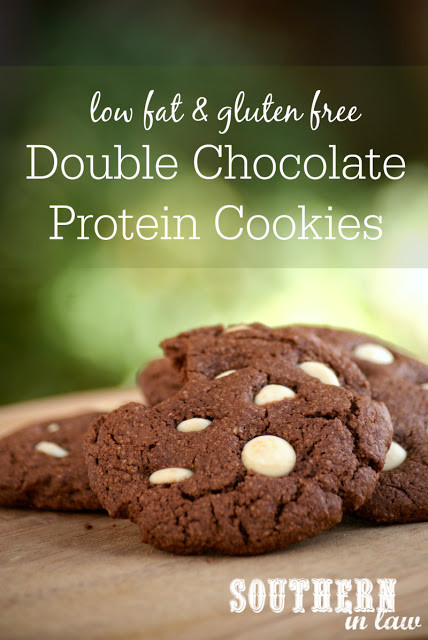 Healthy Cookies Recipe Low Calorie  Southern In Law Recipe Healthy Double Chocolate Protein