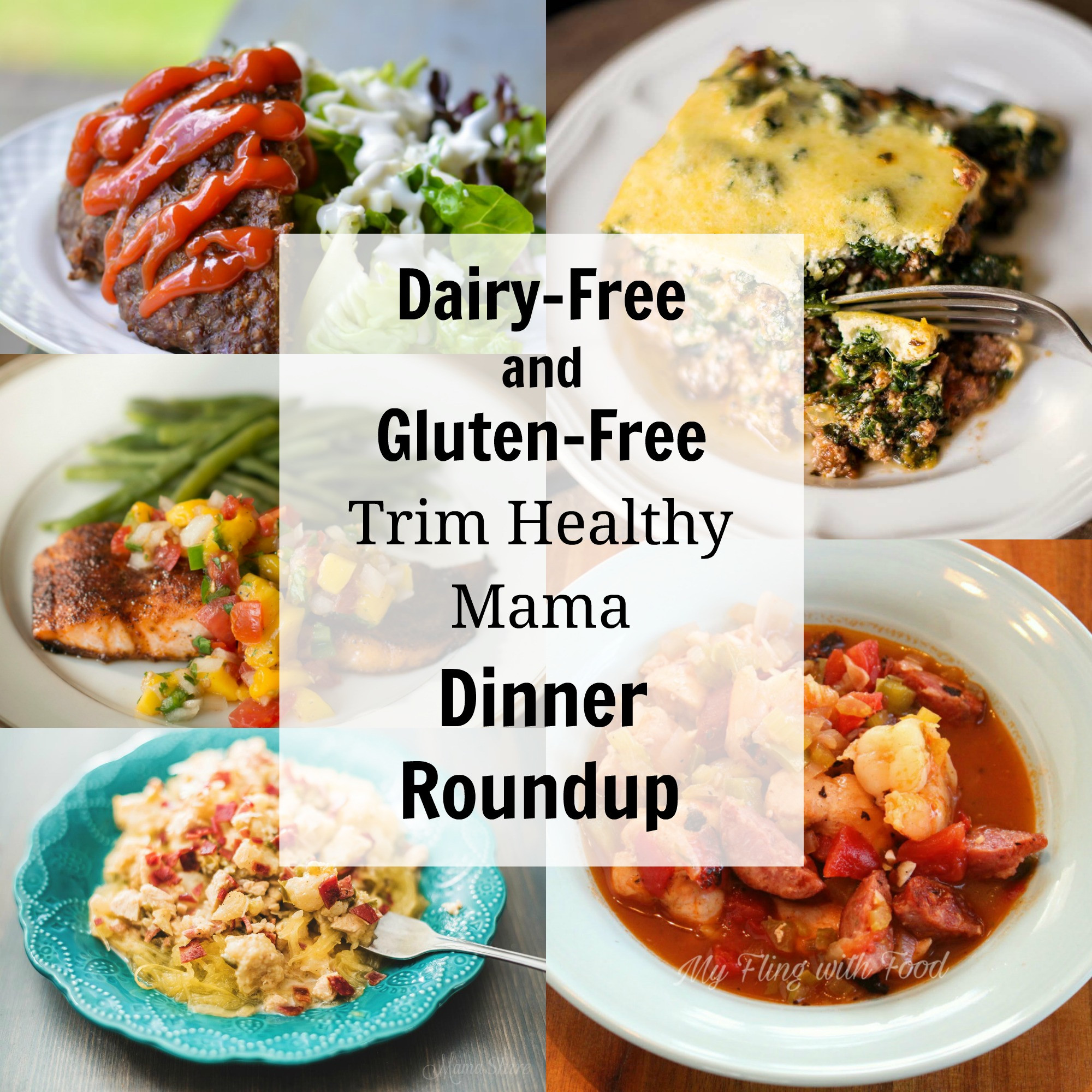 Healthy Dairy Free Recipes  Dairy Free and Gluten Free Trim Healthy Mama Dinners