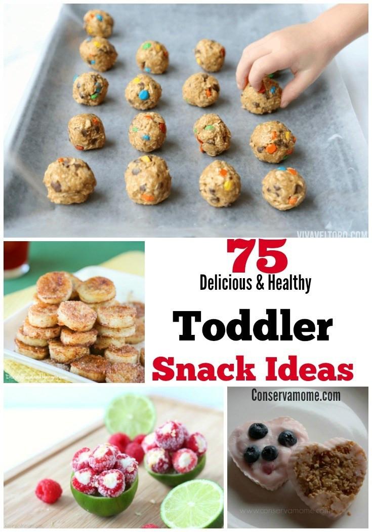 Healthy Delicious Snacks  75 Delicious & Healthy Toddler Snack Ideas ConservaMom