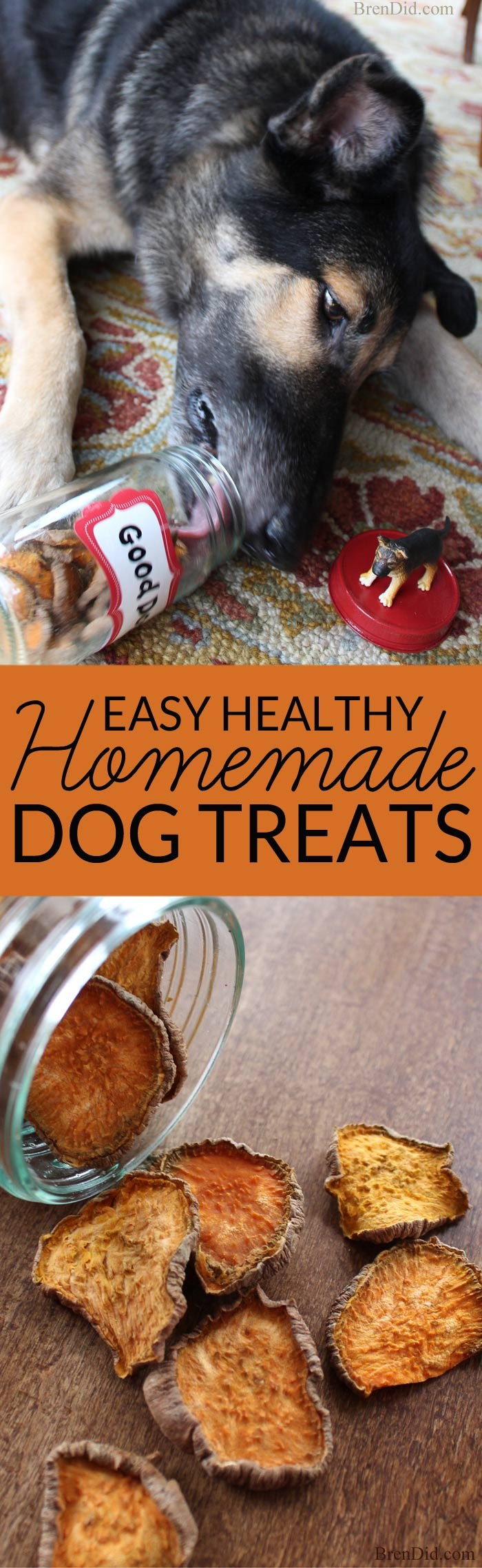 Healthy Dog Snacks  Healthy Homemade Dog Treats Bren Did